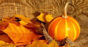 belle image avec citrouille et feuilles d'automne
